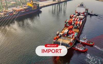 Import i wartość importu w Polsce
